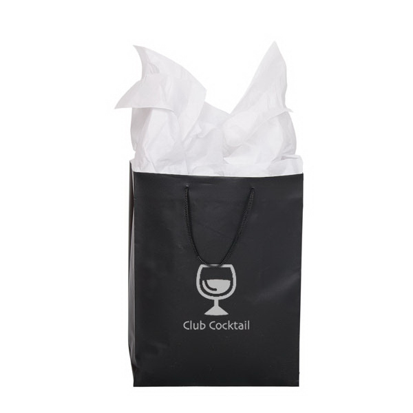 Printed Small Gift Bag with Tissue Paper