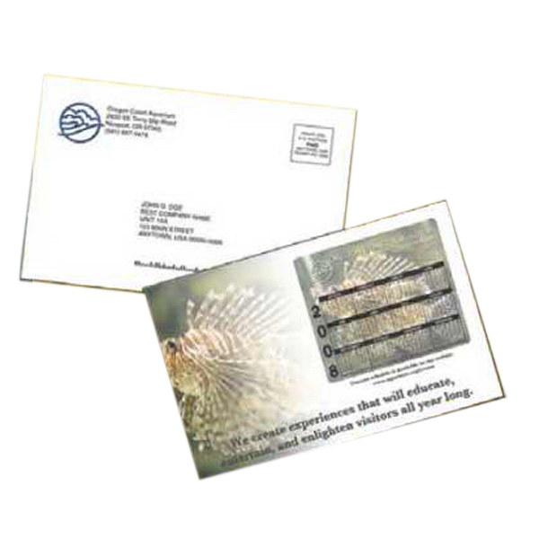 Promotional Large Postcard Magnet Flat Package Mailer