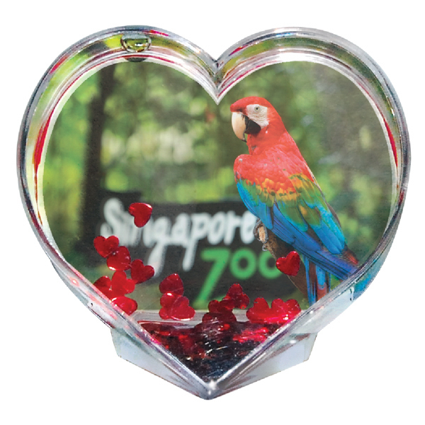 Personalized Full color heart paper weight