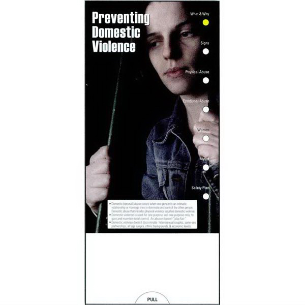 Custom Preventing Domestic Violence Guide