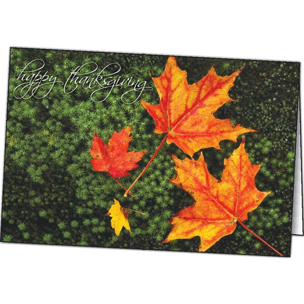 Custom Thanksgiving Color special occasion cards