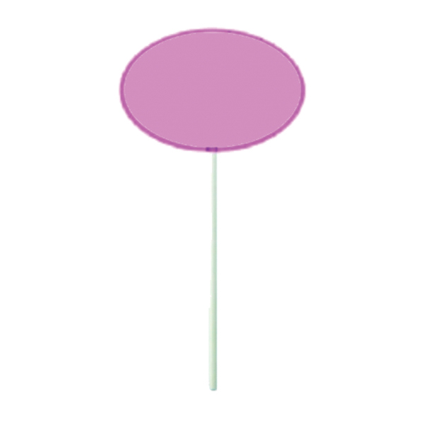 Printed Pink Oval Lollipop