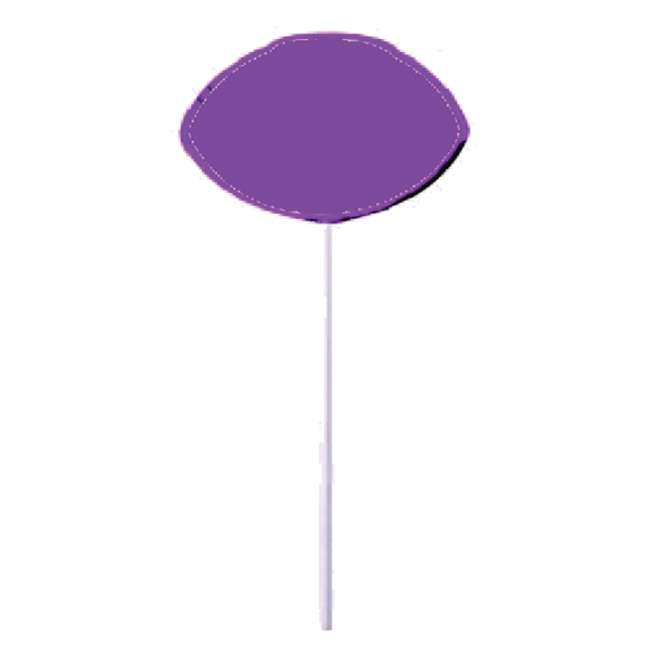 Custom Purple Football Lollipop