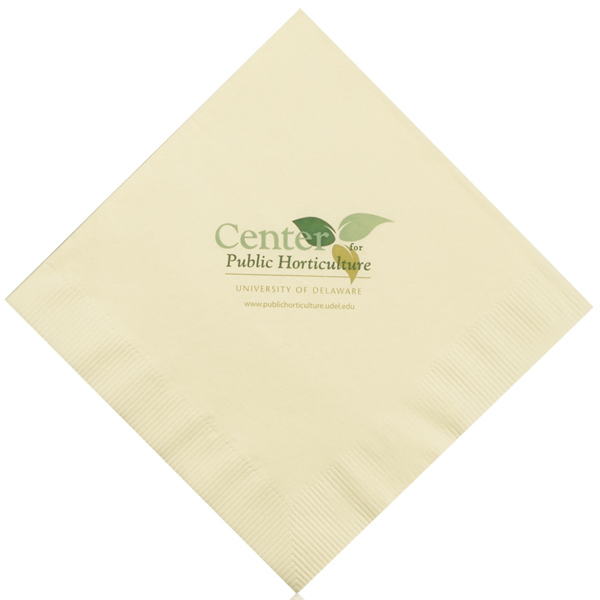 Custom Color Luncheon Napkins