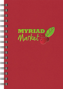 Promotional NEW ITEM! - Express NotePad (TM)  SeminarPad