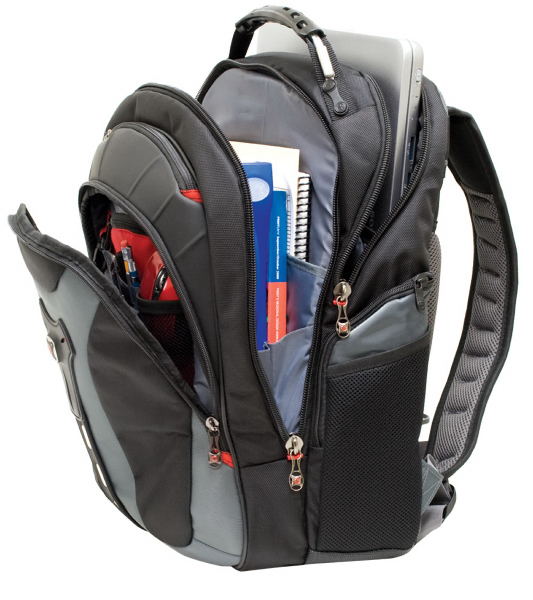 "Printed PEGASUS 17"" computer backpack"