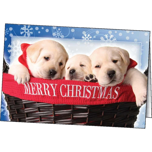 Personalized Christmas Surprise greeting card