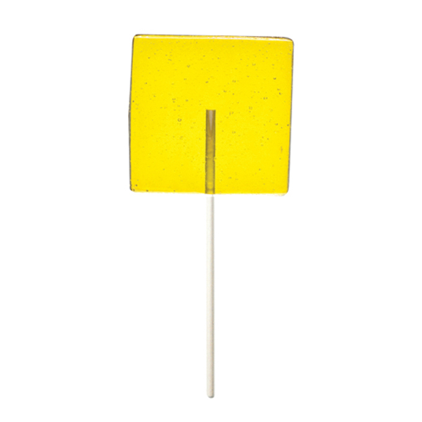 Printed Yellow Square Fun Size Price Buster Lollipop