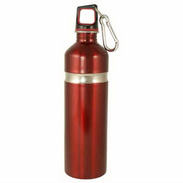 Imprinted Stainless Bottle with Carabineer