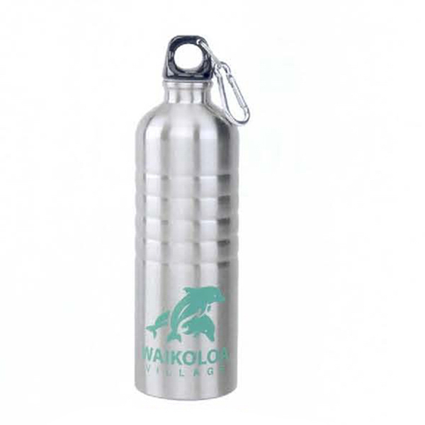 Promotional 27 oz. Stainless Steel Sports Bottle