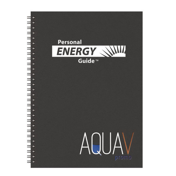 Promotional Energy Guide Analyst Monthly