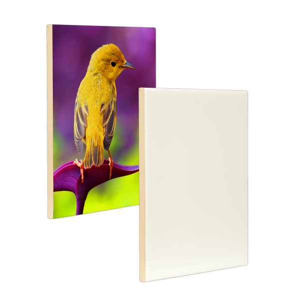 "Personalized 4.25"" x 4.25"" Ceramic Photo Tile w/ Space (Gloss Finish)"