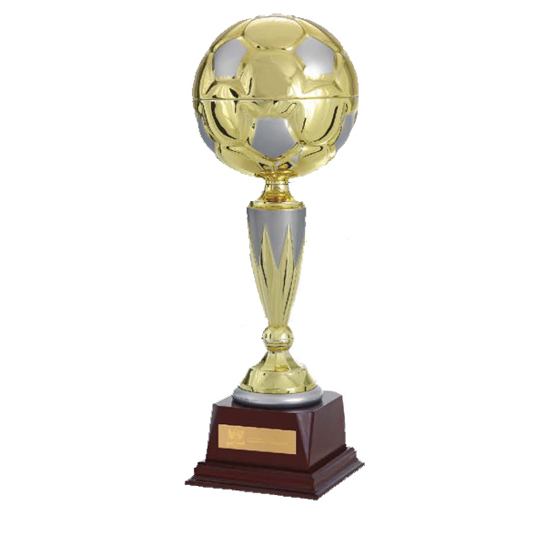 "Custom 13"" Top Score Trophy"