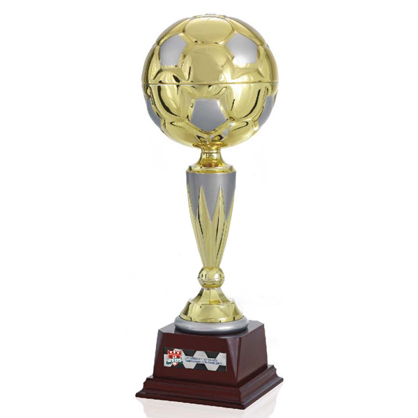 "Promotional 15"" Top Score Trophy"