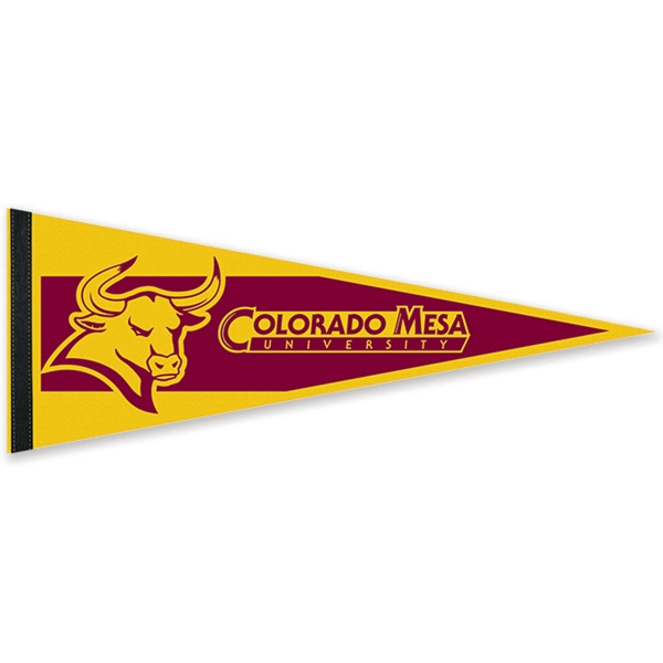 Customized Colored Felt Pennant with Sewn Strip
