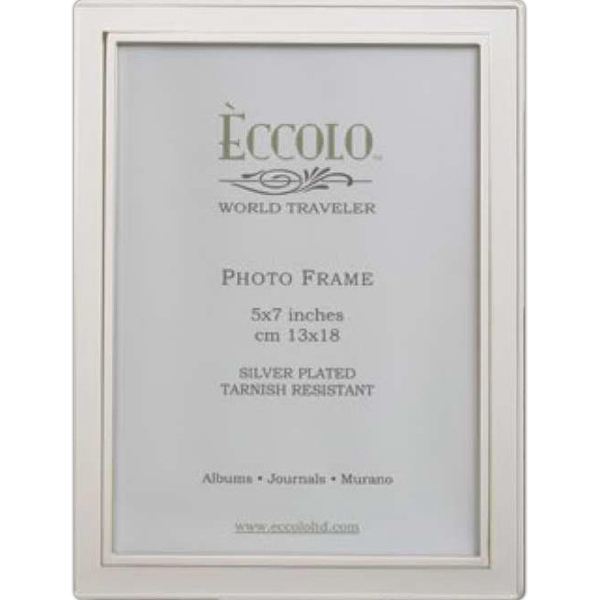 Promotional Silver Collection Raised Edge Frame