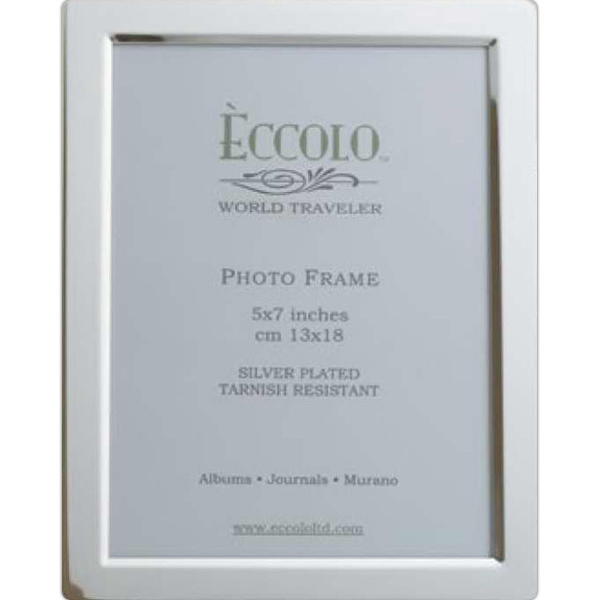 Printed Silver Collection Beveled Frame