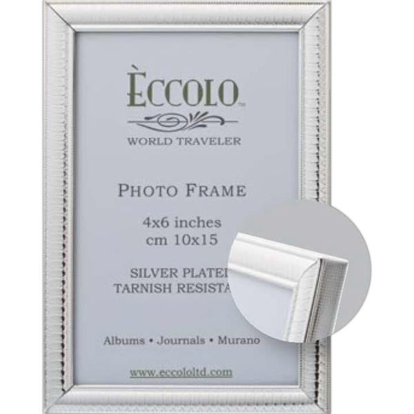 Printed Silver Collection Egg & Dart Frame