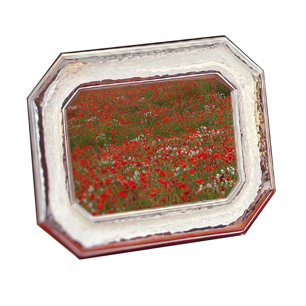 Printed Sterling Collection Octagonal Frame