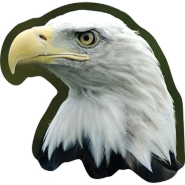 Custom Eagle Magnet