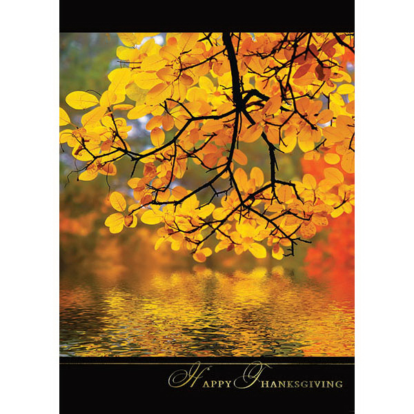 Printed Reflection Greeting Card