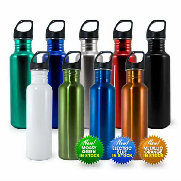 Stainless Bottle with Screw Top Lid