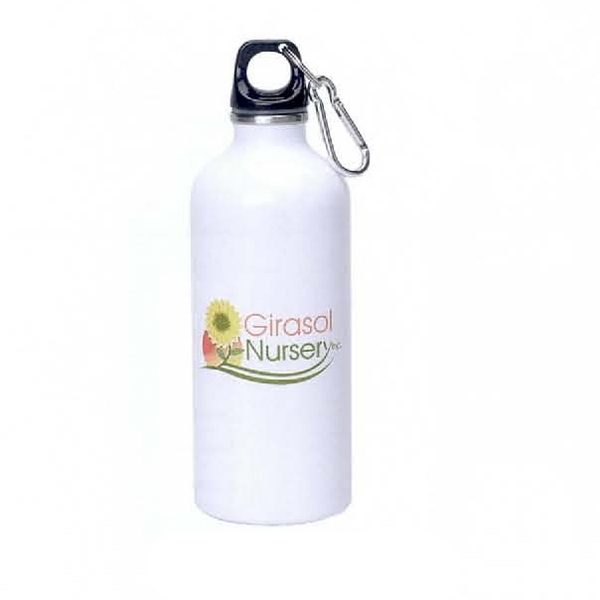 Promotional 22 oz. Stainless Steel Sports Bottle