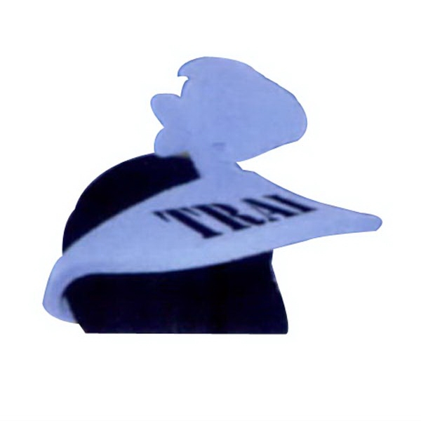 2 Piece Fish Foam Pop-Up Visor