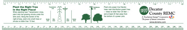 "PRT81 - 12"" Plastic Ruler .020 thickness, full color imprint"