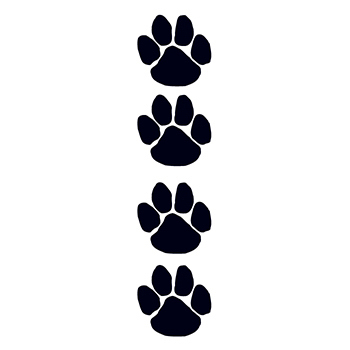 Black Paw Prints Temporary Tattoo Set