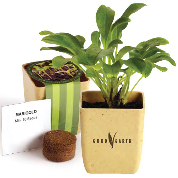 Promotional Flower Pot Set