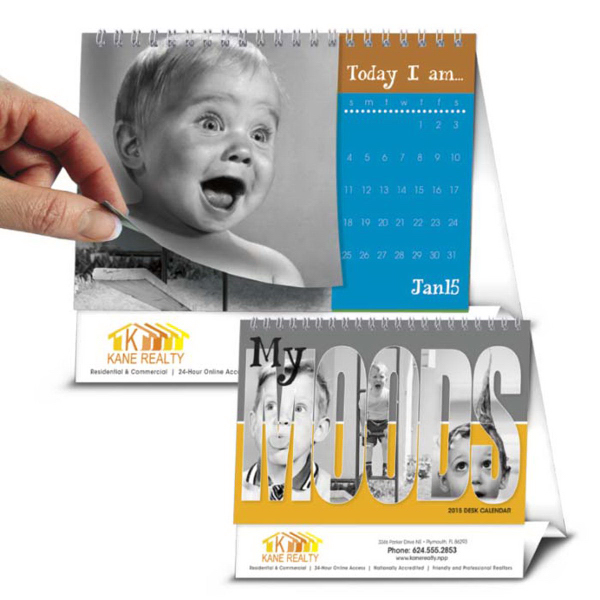 Picture Flip - My Moods Mid Year 2015 Calendar