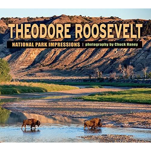 Theodore Roosevelt National Park Impressions