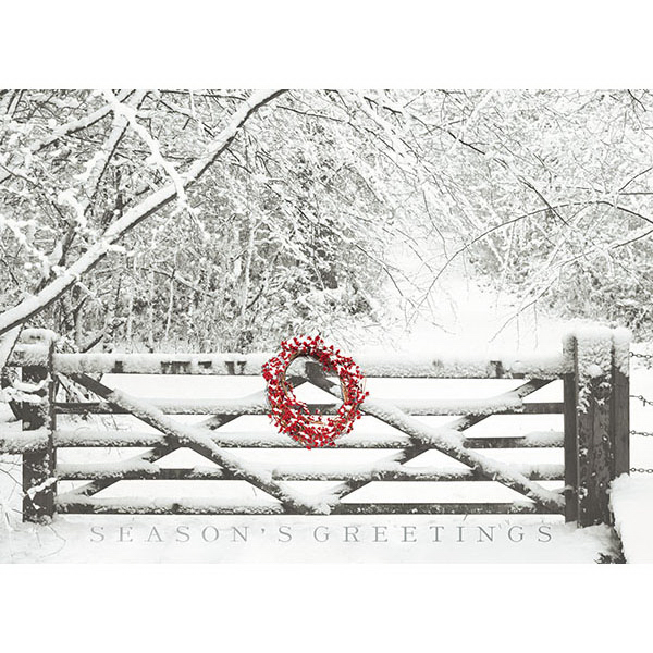 On The Fence In Snow Card