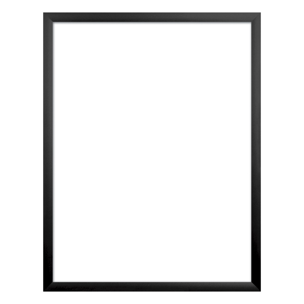 """Front Load Snap Frames - 22"""" x 28"""" Hardware Only"""
