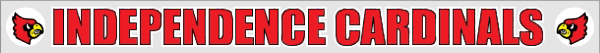 "17"" x 1.5"" Static Stick Clear Bumper Sticker"