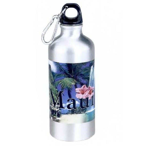 22 oz. Aluminum Sports Bottle