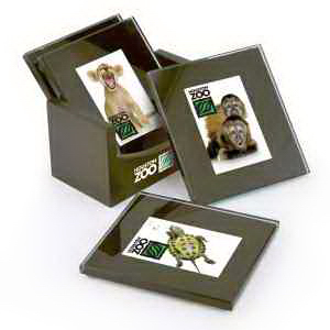 Glass Picture Coaster Set