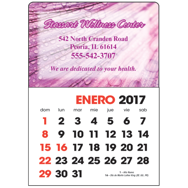 Spanish Full Color Stick Up Grid Calendar