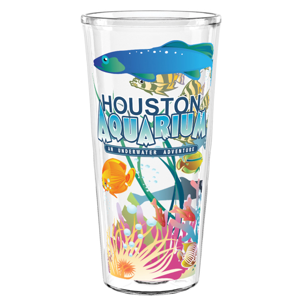 """22 oz Smooth Wall """"Shelby"""" Clear Tumbler WITH LID and STRAW"""