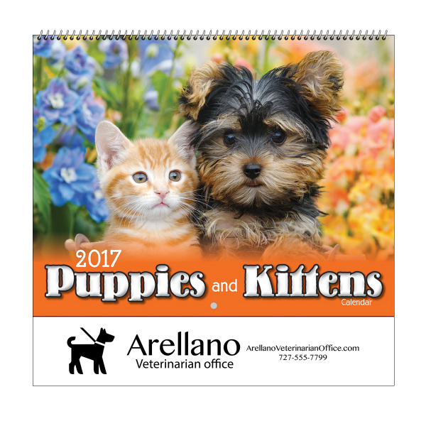 2017 Puppies & Kittens Wall Calendar - Spiral