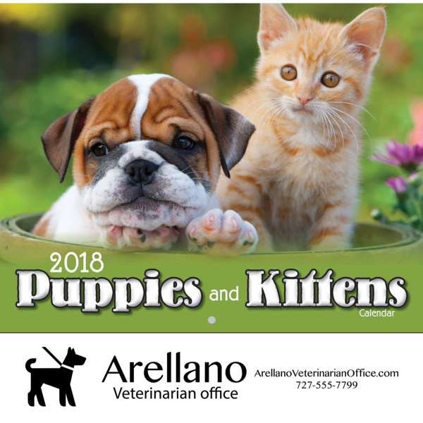 Puppies & Kittens Wall Calendar - Stapled