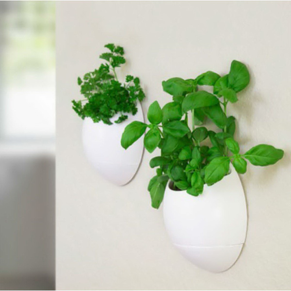 Thumbs Up Eco Pod - Self Watering Herb Pot