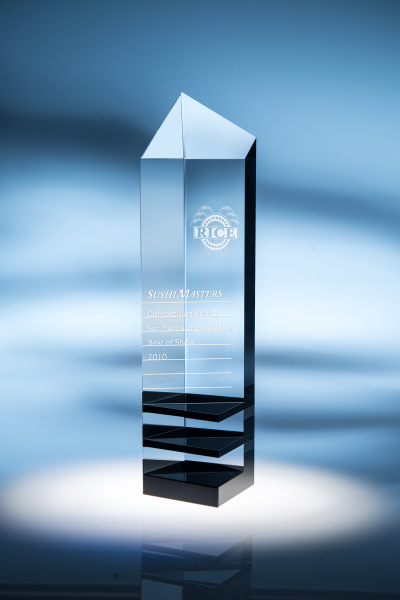 Innovator Optic Crystal Award - Medium