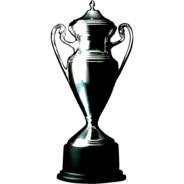 Custom Silver-Plated Award Trophy Cup