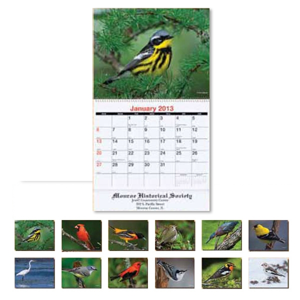 2014 Bird Watching Monthly Wall Calendar