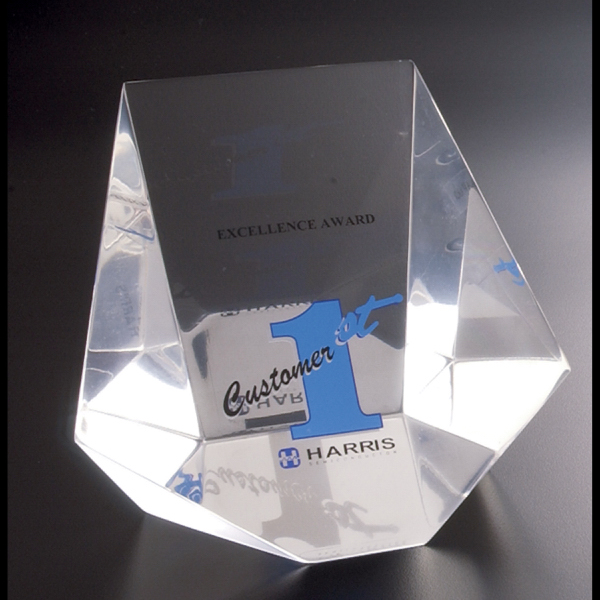 Custom Paperweight/Award