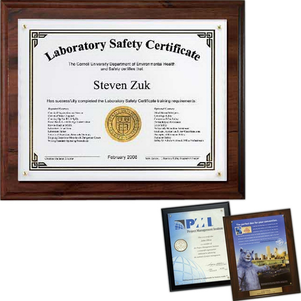 Certificate/Overlay Plaque Kit Walnut Finish