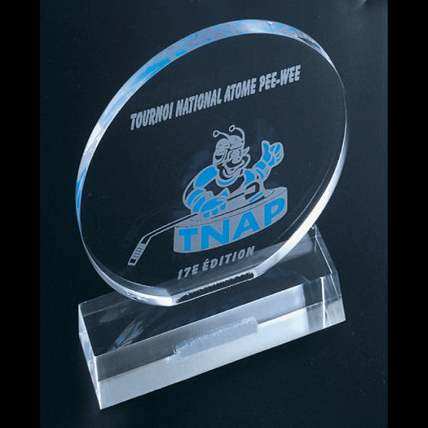 Customized Award