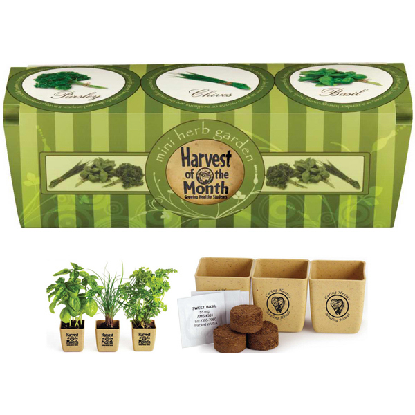 Personalized GrowPot Eco-Planter Herb 3 Pack